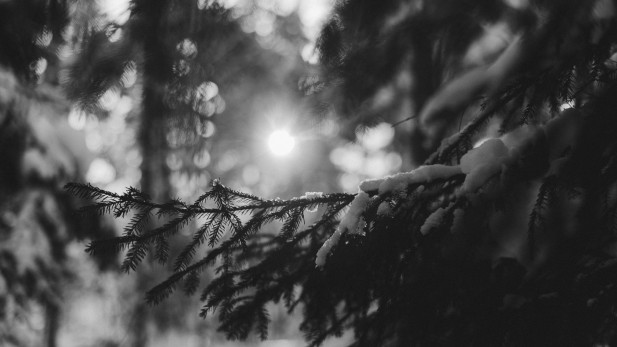 Black and white photography 0001